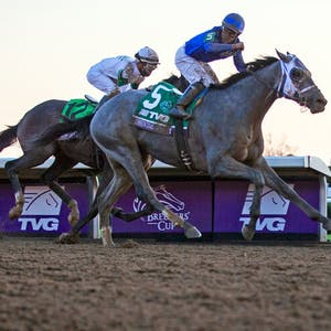Essential Quality Belmont Stakes horse racing