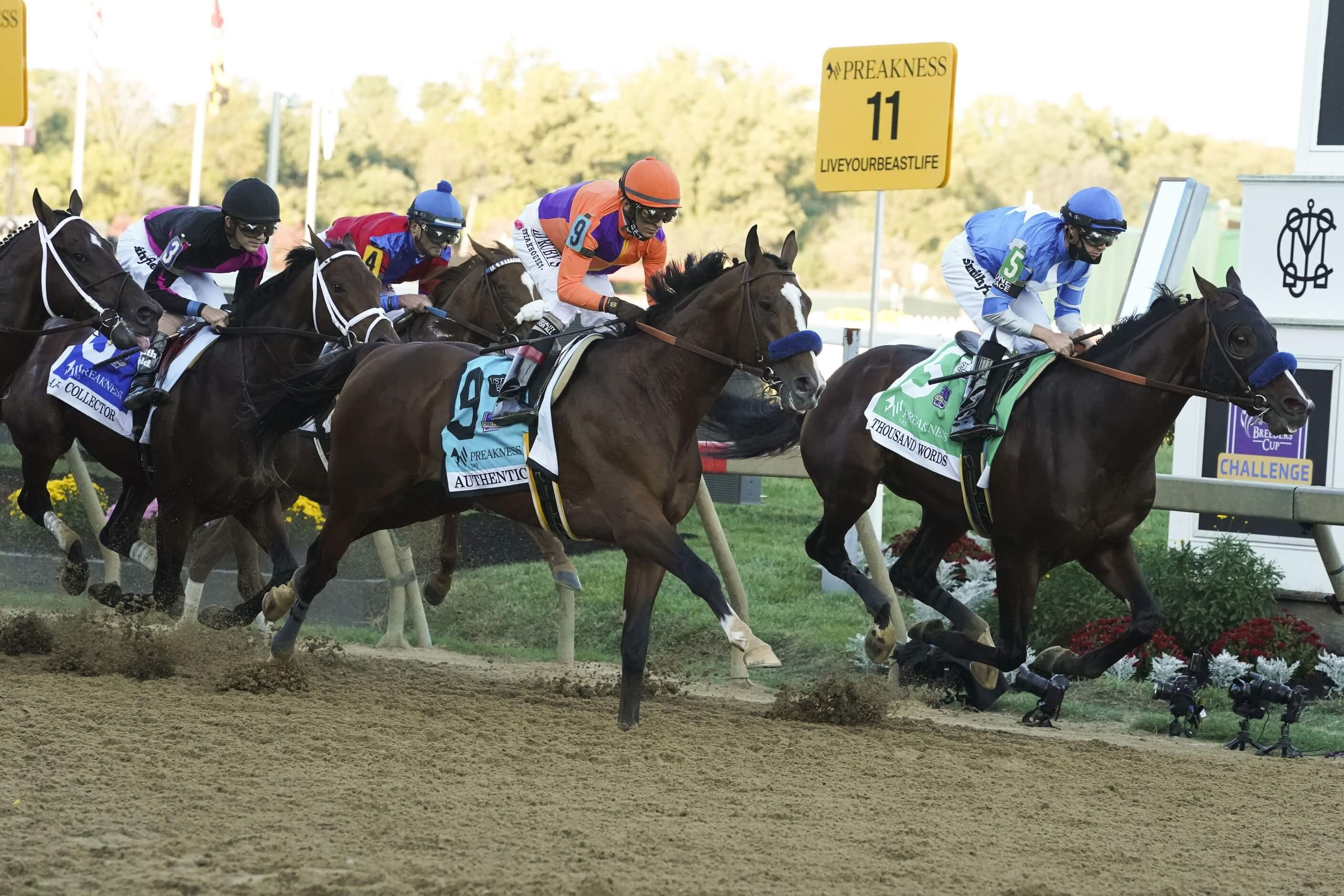 Make Smarter Preakness Stakes Wagers