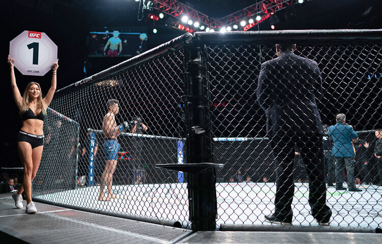 How To Bet - MMA Betting Guide - How to Bet on UFC