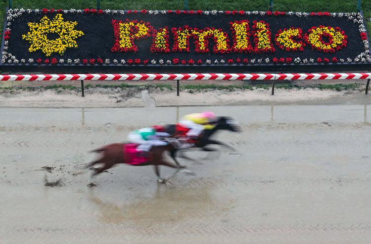 The best bets, prop predictions, and Preakness Stakes odds you didn't know about