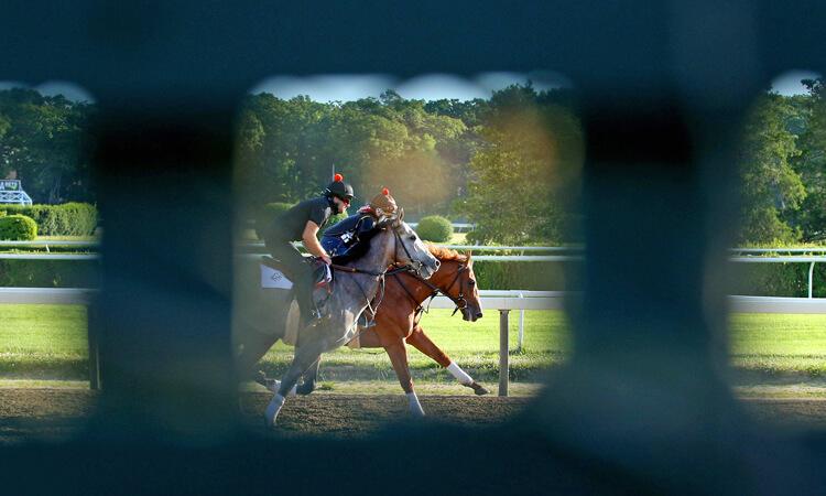 Horses race at Belmont Park.