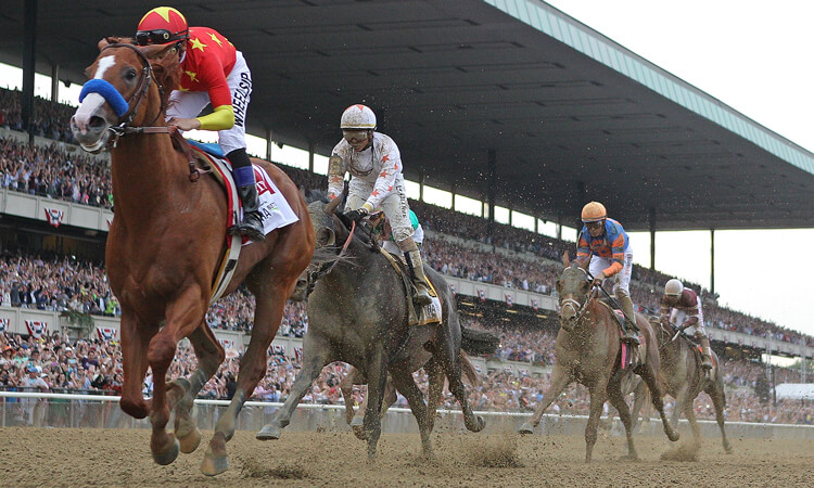 Horses race in the Belmont Stakes.
