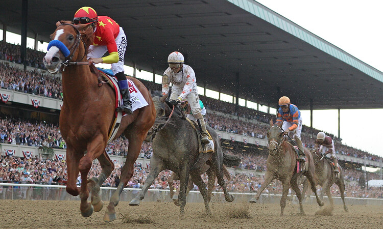 Horses race in the Belmont Stakes